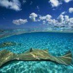 اجمل الصور في العالم , اروع المناظر الطبيعيه فى العالم