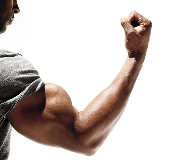 صورة تمارين العضلات , اسهل برنامج تدريبي لتقوية العضلات