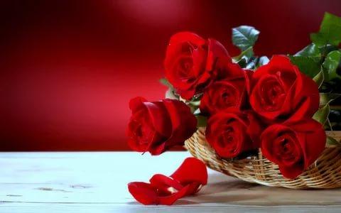 صورة ازهار جميلة , اجمل بوكيهات الورد الطبيعية