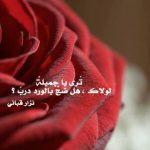 خواطر عن الورد , اجمل ما قيل فى مدح الورد