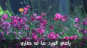 صورة خواطر عن الورد , اجمل ما قيل فى مدح الورد 1021 7