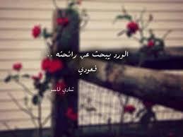 صورة خواطر عن الورد , اجمل ما قيل فى مدح الورد 1021 8