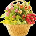 اجمل بوكيه ورد , الورود المنسقة تصنع احلى بوكيه ورد