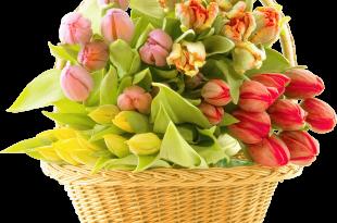 صورة اجمل بوكيه ورد , الورود المنسقة تصنع احلى بوكيه ورد