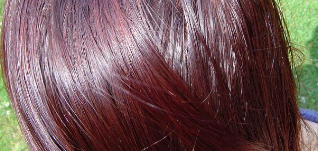 صورة صبغات شعر طبيعية , اجمل الالوان الجديده لصبغه الشعر