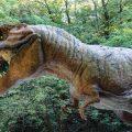 معلومات عن الديناصورات , معلومه مفيده عن الحيوان المنقرض الديناصور