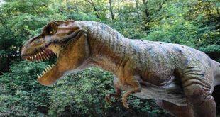 صورة معلومات عن الديناصورات , معلومه مفيده عن الحيوان المنقرض الديناصور