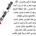 شعر عراقي شعبي , اجمل ابيات الشعر العراقى