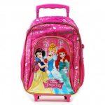 حقائب مدرسية , صور شنط جميلة للمدارس