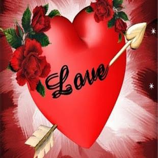 صورة اجمل ورود الحب , صور ورد الحب رائعه