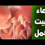 دعاء الحمل , ادعيه لتثبيت الحمل واتمامه