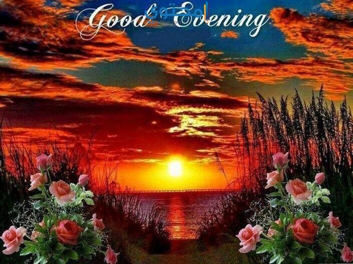 صورة اجمل مساء الخير , كلمات عن مساء الخير 2935 8