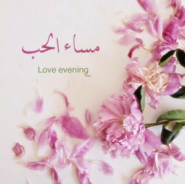صورة اجمل مساء الخير , كلمات عن مساء الخير 2935 9