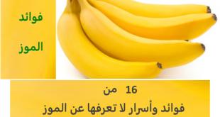 صور ماهي فوائد الموز , الموز واهم فوائده لجسم الانسان