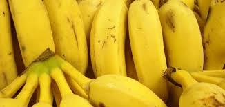 صورة ماهي فوائد الموز , الموز واهم فوائده لجسم الانسان