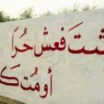 موضوع تعبير عن الحرية , تعبير عن حريه جميع الشعوب