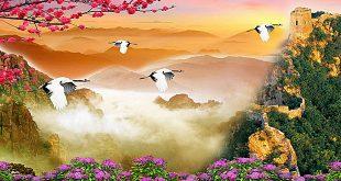 صور صور جمال الطبيعه , اجمل صور لجمال الطبيعه