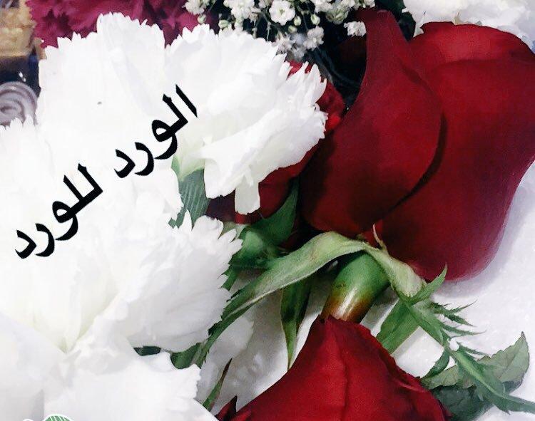 صورة صباح الورد للورد , اجمل صباح الورد على عيون الورد 3099 3