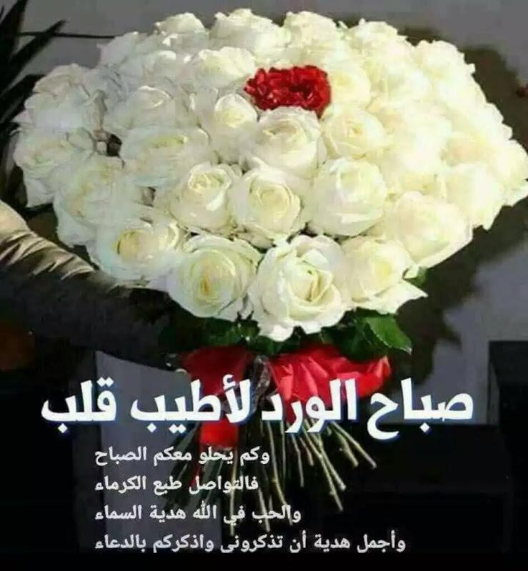 صورة صباح الورد للورد , اجمل صباح الورد على عيون الورد 3099 5