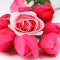 اجمل الورود في العالم , احلى صور ورود روعة