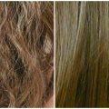 علاج الشعر الجاف , مشاكل وحلول الشعر الجاف