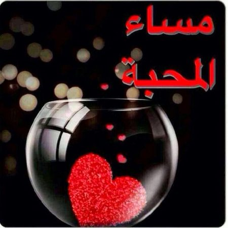 صورة رمزيات مساء الخير , اروع صور مساء الخير 339 3