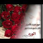 حكم عن الورد , كلمات عن الورد