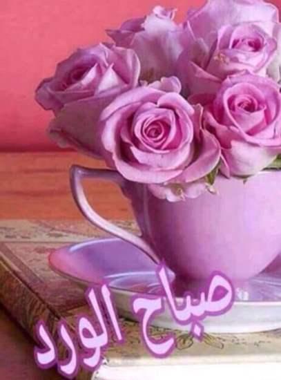 صورة صور صباح الخير جديدة , اروع الصور المكتوب عليها صباح الخير 426 6