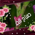 صباح الورد والفل , صور جميلة مكتوب عليها عبارات عن الصباح
