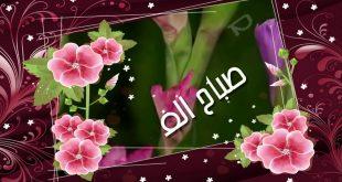 صورة صباح الورد والفل , صور جميلة مكتوب عليها عبارات عن الصباح 428 14 310x165