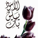 روايات عربية رومانسية , افضل الروايات الرومانسية ننصحك بقرائتها