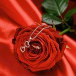 صور عن الورد , صور عن الورد رؤعة مفيش اجمل منها