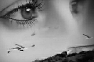 صورة عيون سوداء , صور عيون سوداء جميله