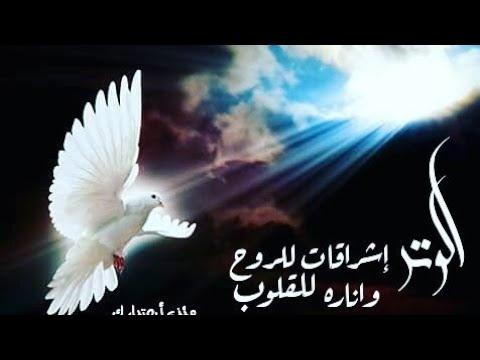 صور اغانى دينية مصرية , اجمل اغنيه دينية من مصر