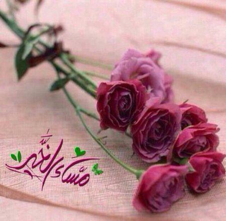 صورة صور مساء الورد , خلفيات مساء الورد