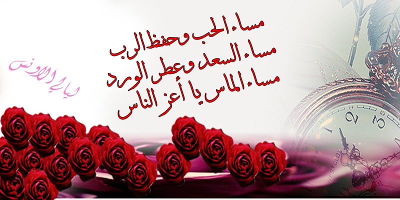 صورة صباح الورد حبيبتي , خلفيات صباحية رومانسيه 5633 3
