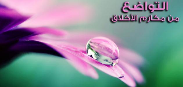 صورة صور عن التواضع , التواضع صفة جميلة ياليت تكون فيك 6429 11