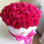 احلى صور ورد , مش هتلاقي احلى من الورد هدية
