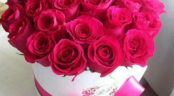 صورة احلى صور ورد , مش هتلاقي احلى من الورد هدية 297 13 600x330