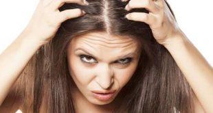 صور علاج سقوط الشعر , لن تفقدي شعرك بعد الان اطمئني