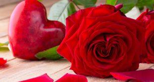 صورة صور اجمل الورد , ارق باقات محملة بشذى الزهور