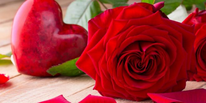 صورة صور اجمل الورد , ارق باقات محملة بشذى الزهور 13024 12 660x330
