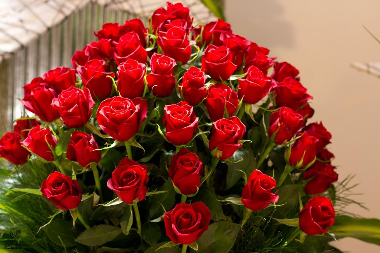 صورة صور اجمل الورد , ارق باقات محملة بشذى الزهور 13024 6