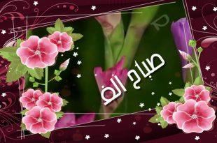 صورة صور صباح الورد والفل , ما اجمل الصباح مع نسمات فجر يوم جديد