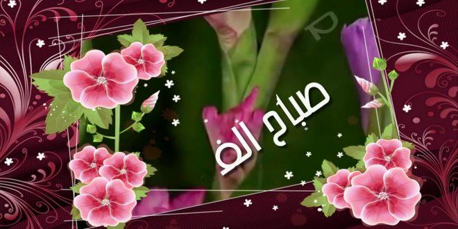 صور صور صباح الورد والفل , ما اجمل الصباح مع نسمات فجر يوم جديد