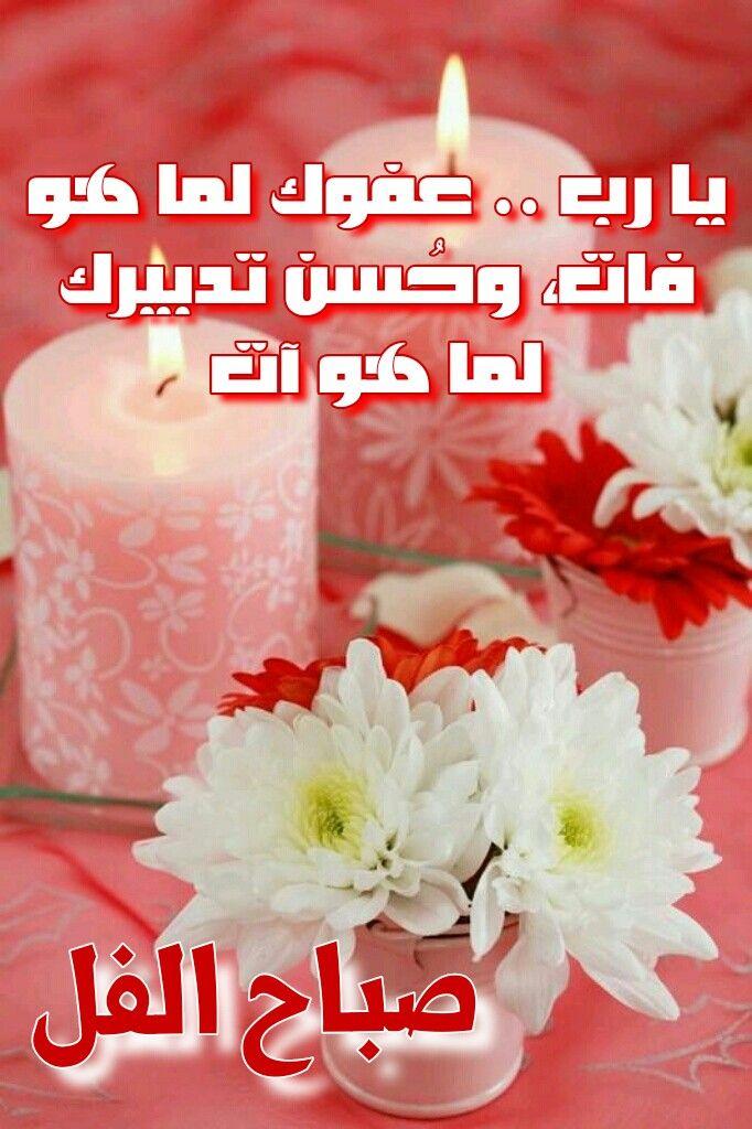 صورة صور صباح الورد والفل , ما اجمل الصباح مع نسمات فجر يوم جديد 13084 7