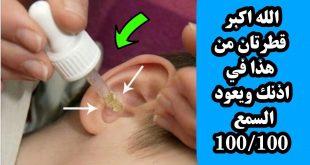 صورة وصفات لتقوية عصب السمع , ازاى اقوى سمعى
