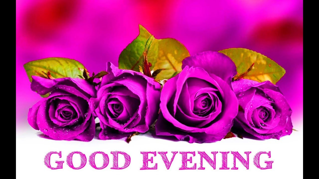صورة مساء الخير مساء الورد , ارق امسيات الليل الشائعة 12968 1