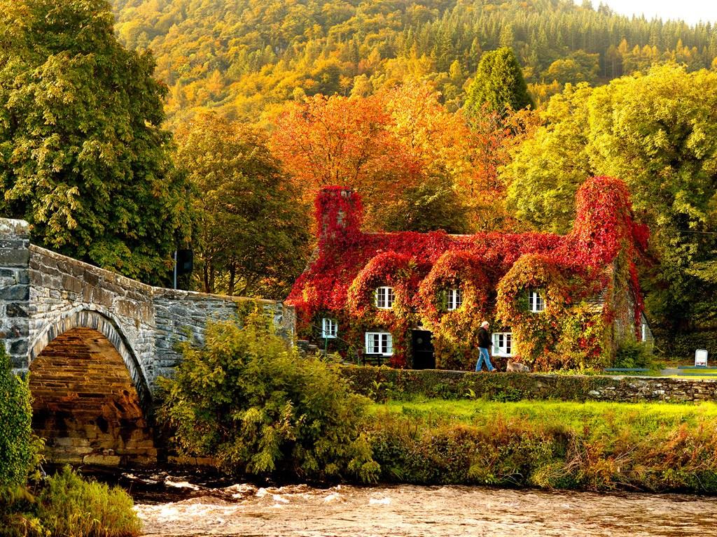صورة موضوع عن فصل الخريف , وصف الطبيعة فى شهر الخريف