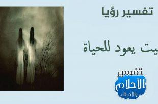 صور حياة الميت بعد موته في المنام , تفسير رؤيا عودة الميت للحياة
